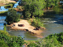 Another river plain, with hippos relaxing on the beach.