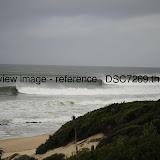 _DSC7269.thumb.jpg