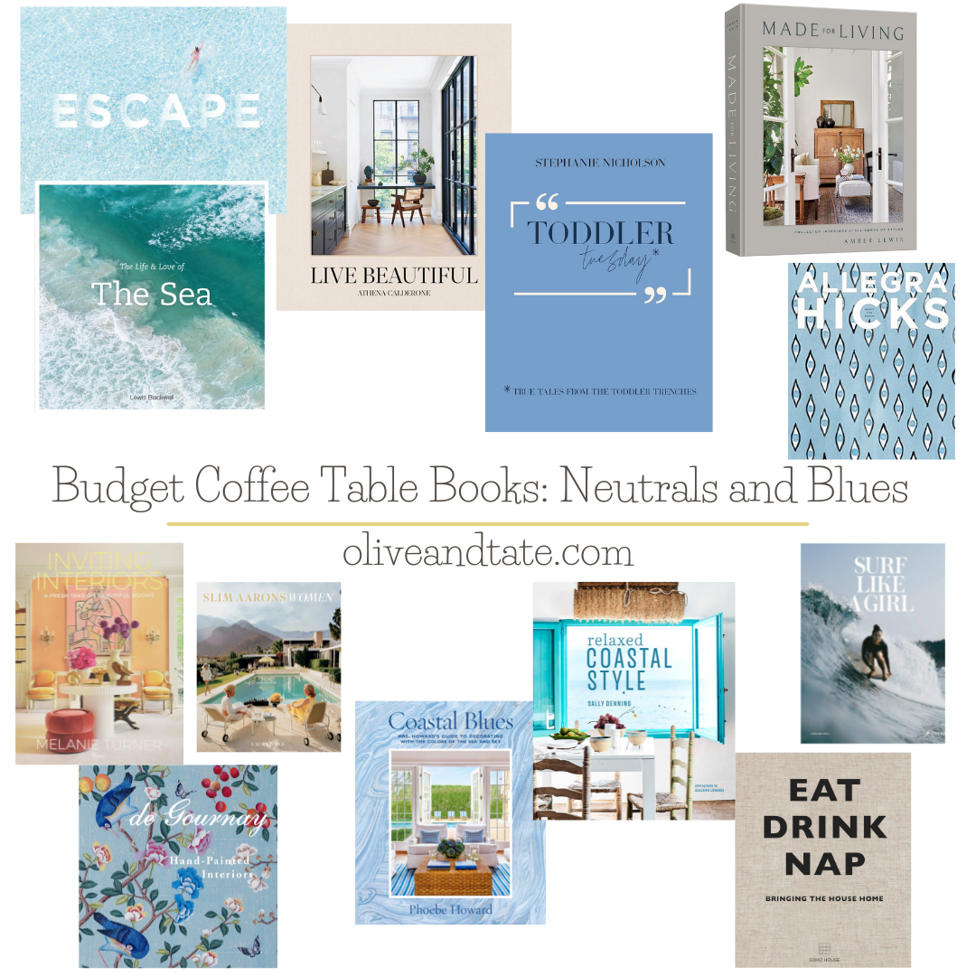 Budget Coffee Table Books: Neutrals and Blues