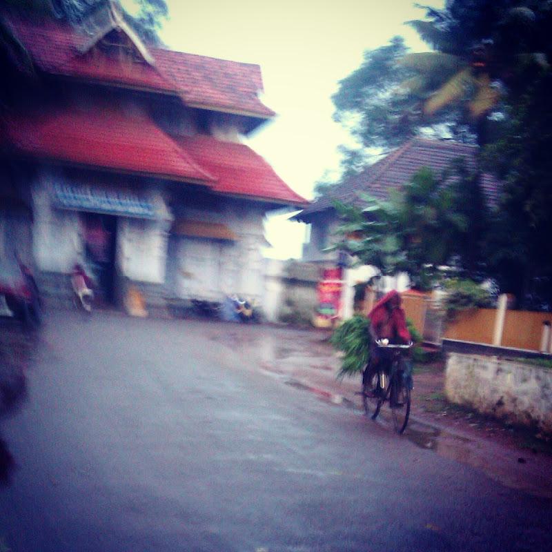 Green Cyclist