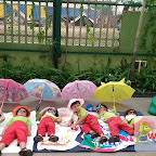 Sun Bathing Activity done by PG - B at Witty World, Chikoowadi (2017-18)