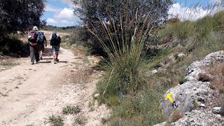 Peregrinos por El Camino de la Santa Cruz entre La Alberca y Belmonte
