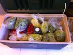 Produce ready for the CSA.