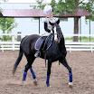 Соревнования по конному спорту. Виола 2016 год