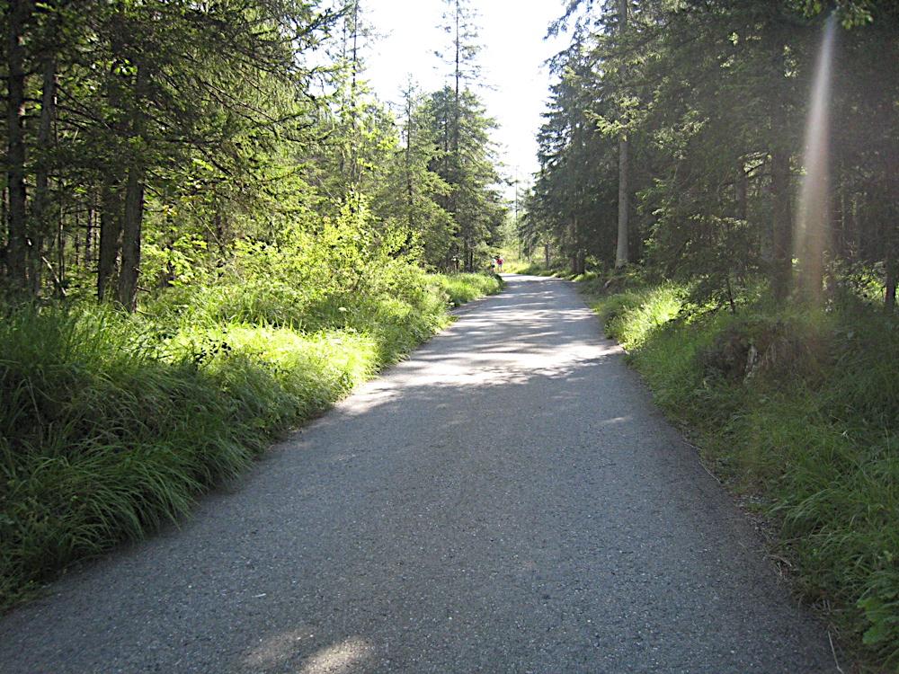 Campaments a Suïssa (Kandersteg) 2009 - IMG_4246.JPG