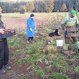 KmetijstvoAgriculture