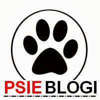 polecamy, biały jack russell terrier, banery, psie blogi