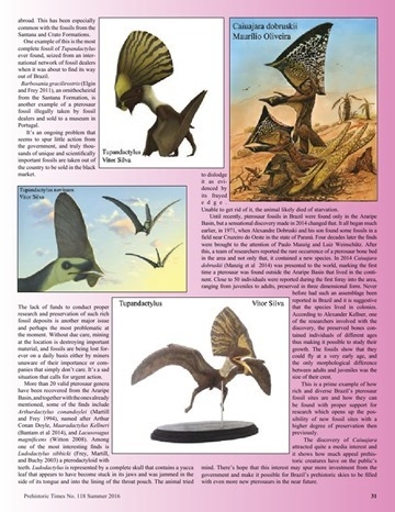 Prehistoric Times - Summer 2016.pdf_page_31_5