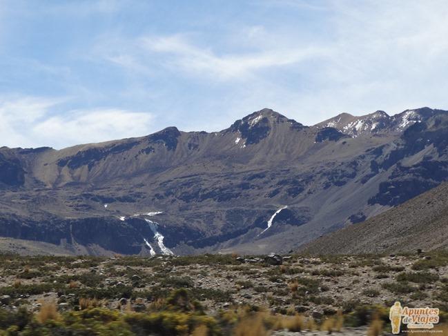 Vicuñas Volcanes Arequipa Chivay Perú 27