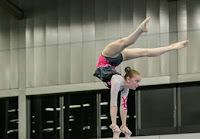 Han Balk Fantastic Gymnastics 2015-9781.jpg