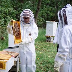TOP PHOTOS - PLC - BEE KEEPING + SUITS - Bees%2BHarvest%2BMan%2BSmile.jpg