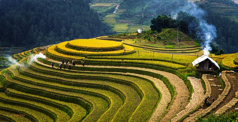 Mu Cang Chai Vietnam Travel guide