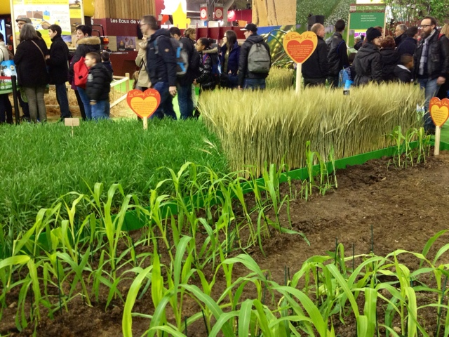 Paris breakfasts salon de l 39 agriculture 2016 for Porte v salon de l agriculture