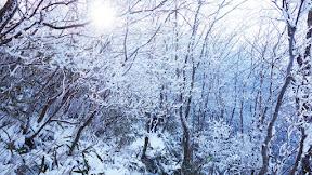 운장산 (전북 진안) : 2015-12-19