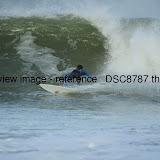 _DSC8787.thumb.jpg