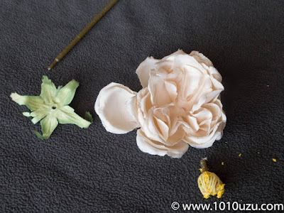 雌しべを引き抜いて花を分解
