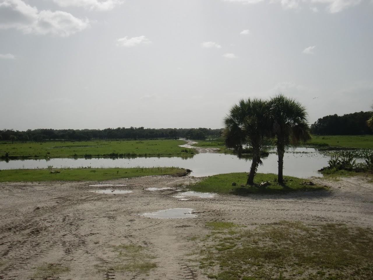 Seabase 2012 - 2012%7E07%7E25 58 Swamp Buggy 9.jpg