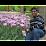 Gandhi Ramanathan's profile photo