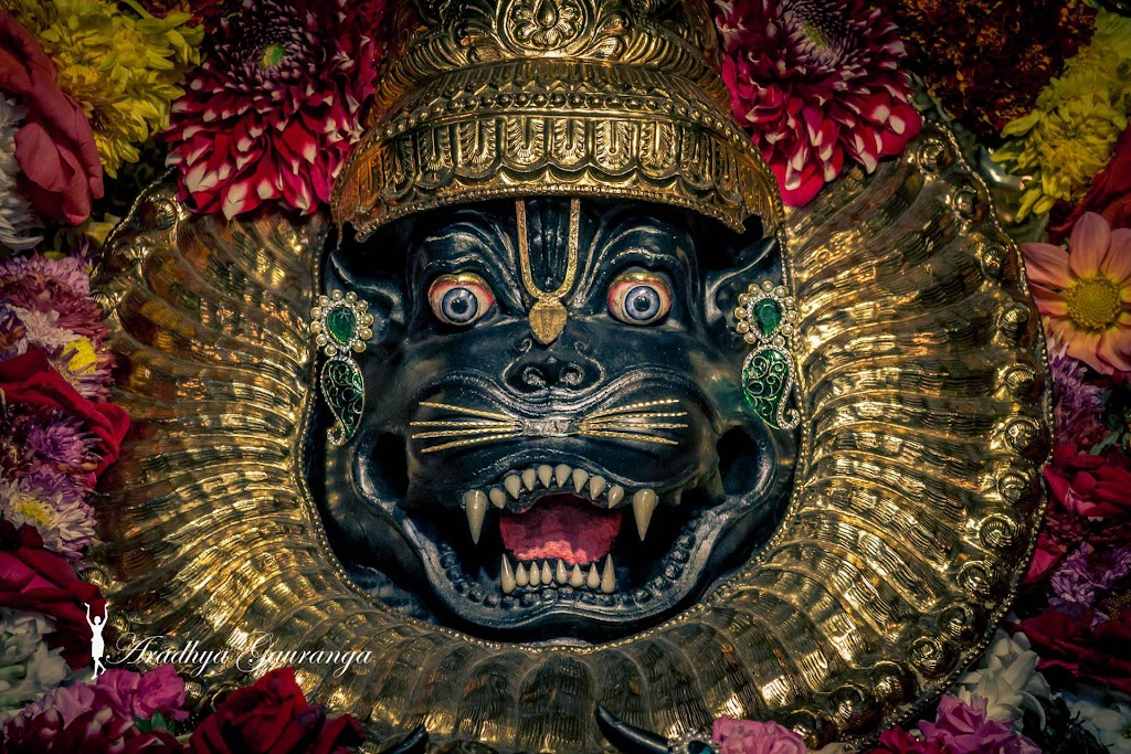 ISKCON Mayapur Deity Darshan 20 Jan 2017 (29)