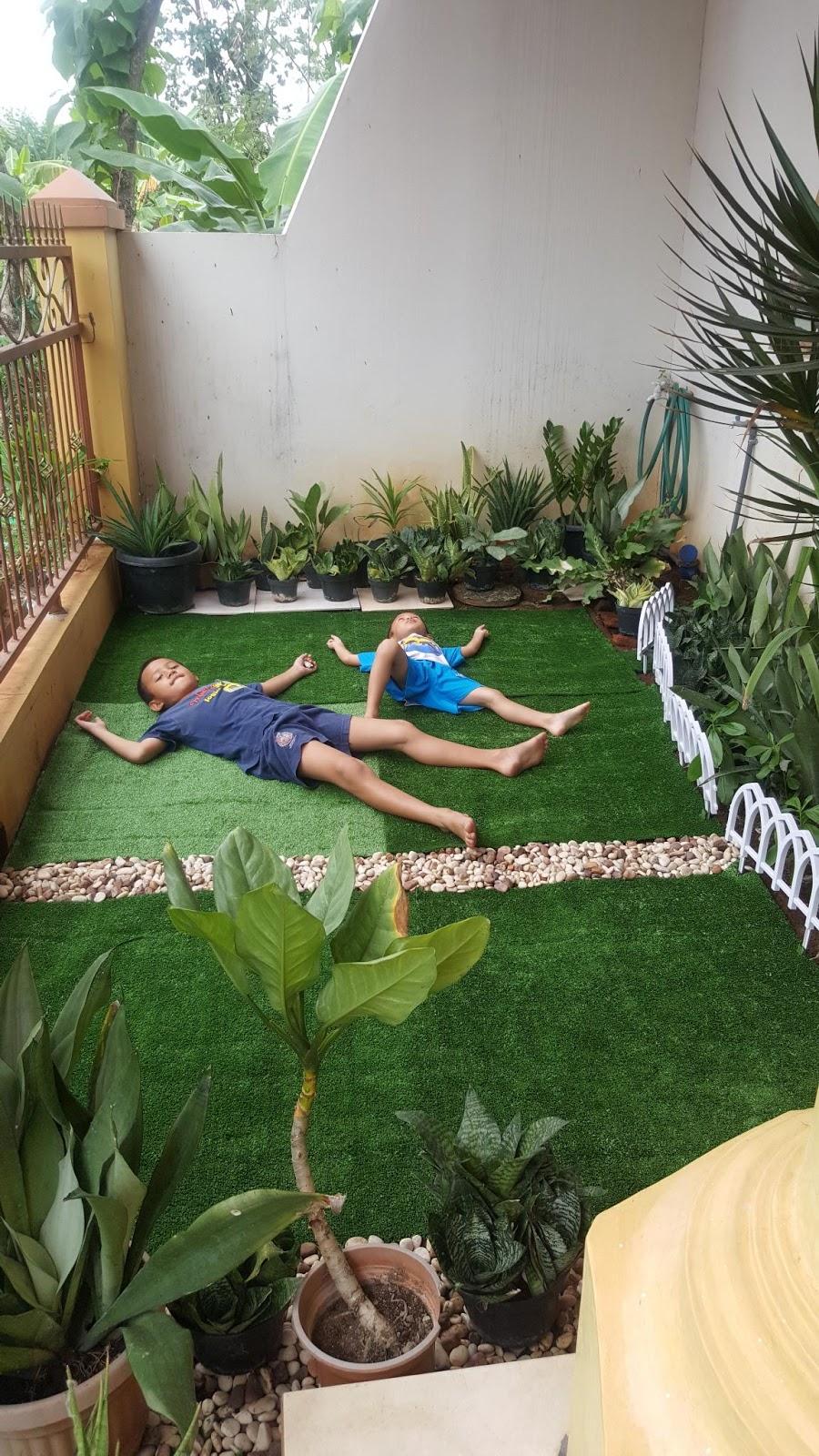 Fun Time 18  Mini Garden dengan Rumput Sintetis  Seni