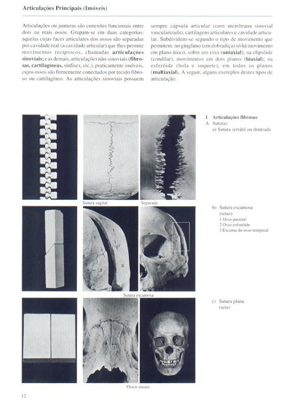012 Articula__es Principais (Im_veis)
