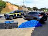 Jovem inabilitado é preso com mais de 600 kg de maconha em carro com placas adulteradas na BR-365 em Muriaé