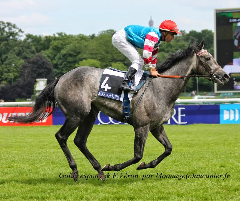 Photos Longchamp 25-05-2014 IMG_1242