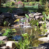 Waterscapes - 100_1568.JPG