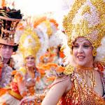 CarnavaldeNavalmoral2015_231.jpg