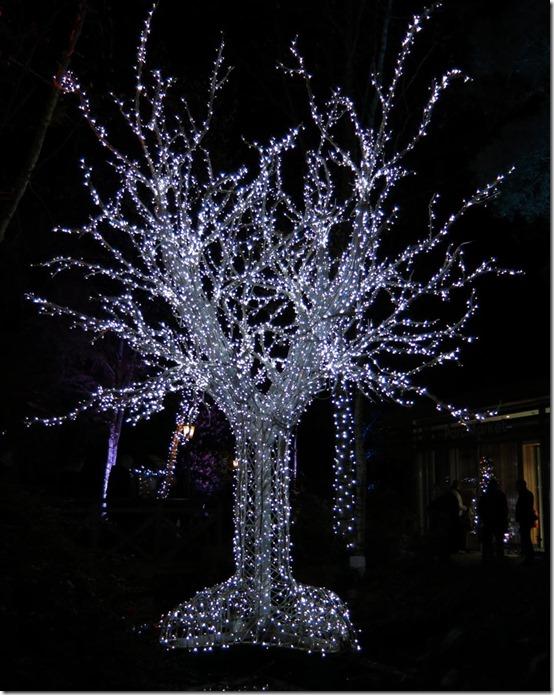 0606A-Sparkle-TreeSu