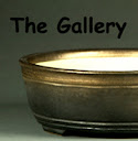 Welcome to our Gallery