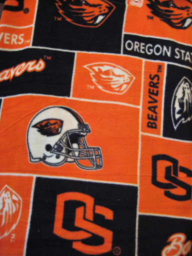 Oregon State Cloth Diaper