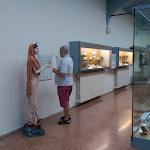 il-museo-nazionale-etrusco-pompeo-aria-marzabotto.jpg
