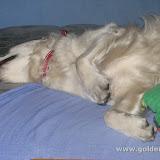 Łóżko jest moje! (09.04.2009r.)