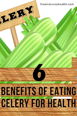 Benefits of Eating Celery for Cancer, Benefits of Eating Celery for Cholesterol, Benefits of Eating Celery for Heart Disease, Benefits of Eating Celery for Hypertension, Benefits of Eating Celery for Weight Loss