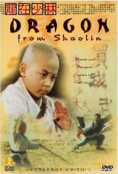 Dragon from Shaolin - Tiểu Tử Thiếu Lâm 3