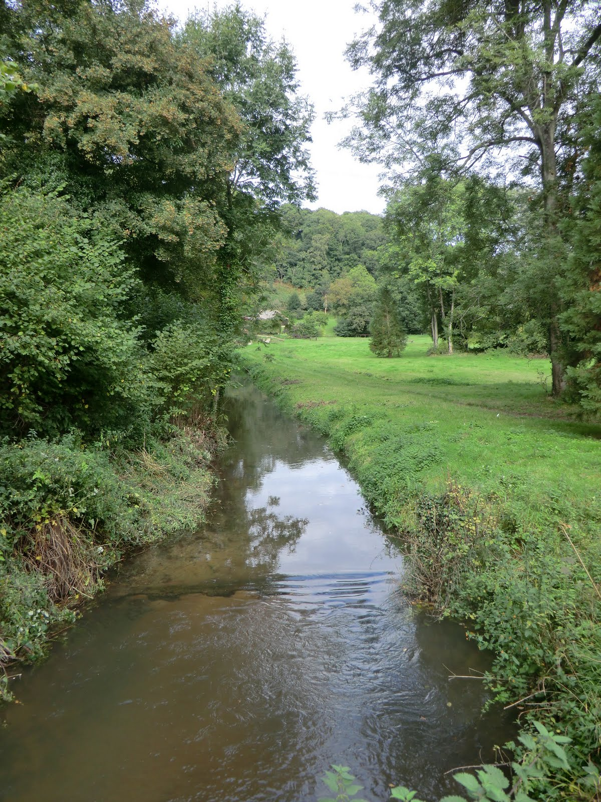 CIMG8678 The River Tillingbourne at Chilworth