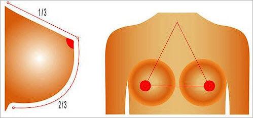 ptose mammaire comment retrouver une belle poitrine regalbée