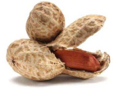 Cacahuetes manies, proteínas