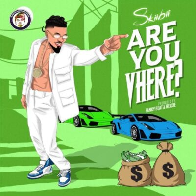 Skiibii – Are You Vhere
