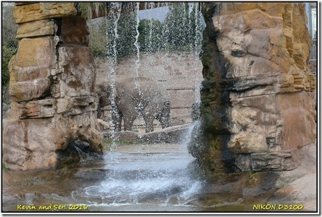 Chester Zoo - October