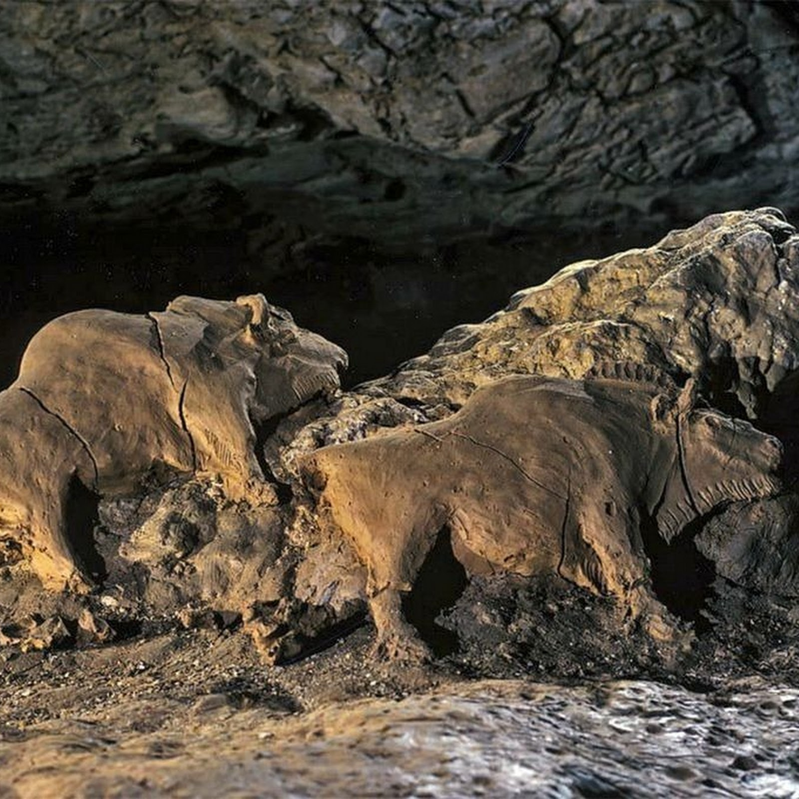 15,000-Year-Old Bison Sculptures at Tuc D'Audoubert Cave