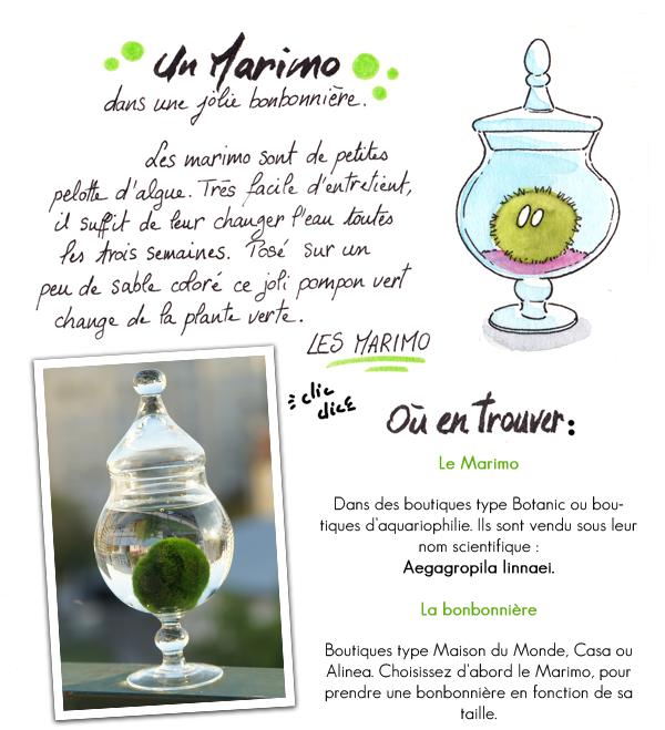 http://joranne.blogspot.fr/2015/09/marimo-ou-les-petites-boules-des-lacs.html