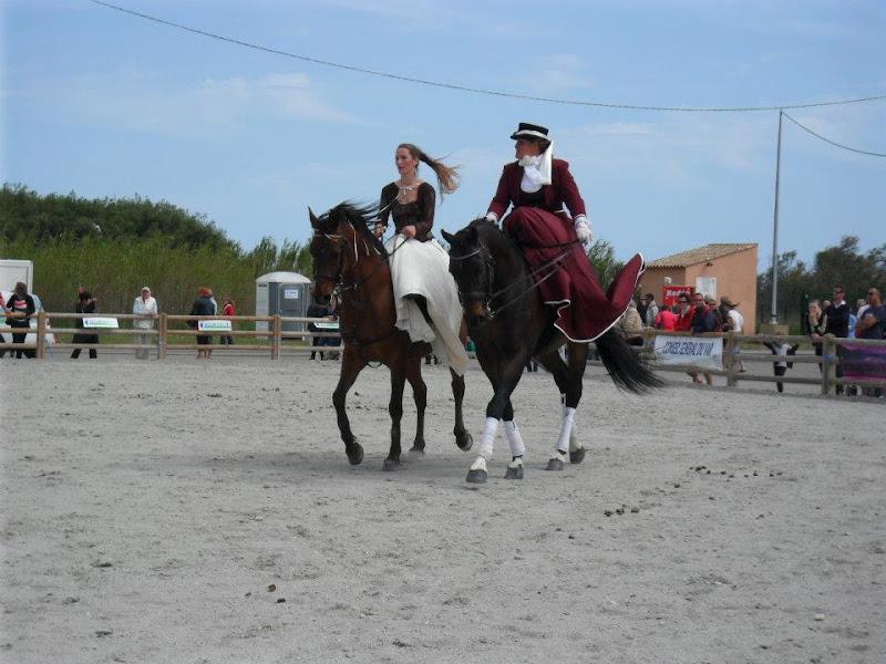 Salon du cheval de frejus 2012 for Chaise qui vole
