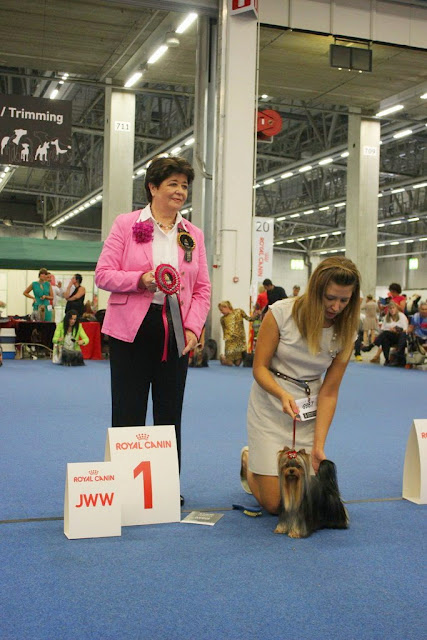 World Dog Show-2014 JWW