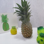 Introduction to Pineapple (Playgroup) 11-8-2015