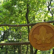 Smotra, Smotra 2006 - P0282318.JPG