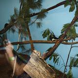 Zoo Snooze 2015 - IMG_7206.JPG