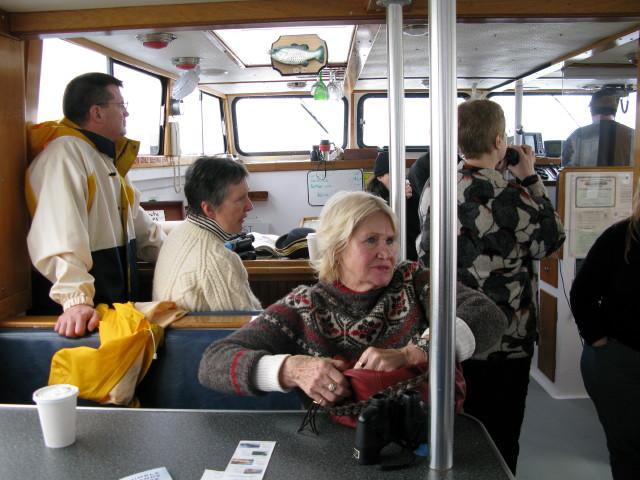 Seal Cruise - seal20.jpg