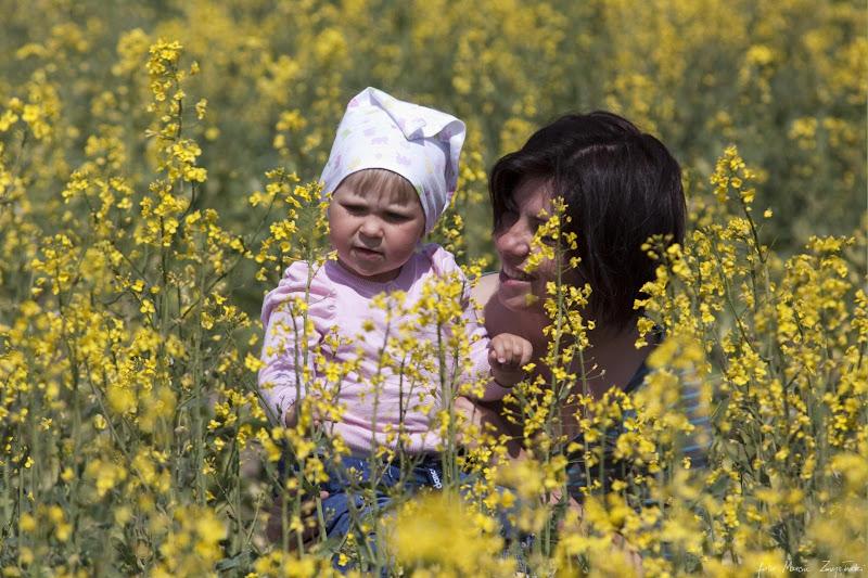 sesja wiosenna z dziecmi na polu Portrety dzieci